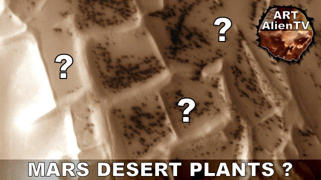 MARS DESERT PLANTS & ARTIFICIAL STRUCTURES ? Seasonal Vegetation ? ArtAlienTV – 1080p60