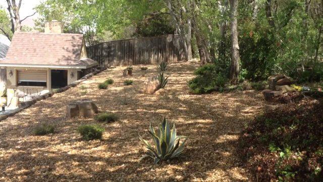817-759-0102: Fort Worth Landscape Company installs a Xeriscape Drought Tolerant Plants