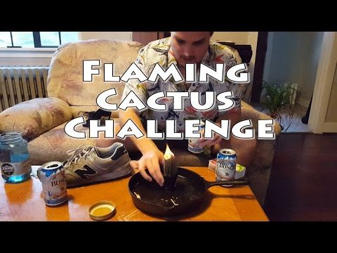 Idiot Eats a Flaming Cactus! #FlamingCactusChallenge Don't Try this at home!