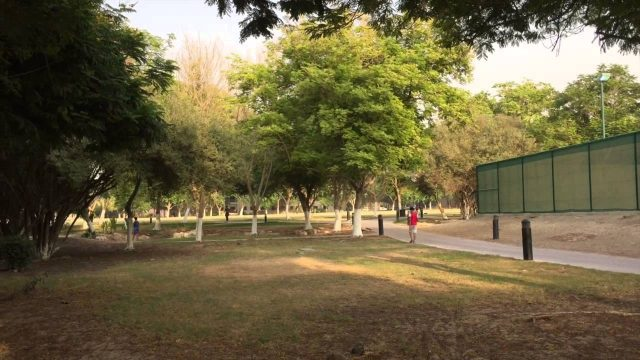Transformation Of a Desert Into Green Heaven – The Gardens, Dubai