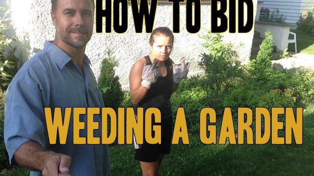 How to do Garden Landscaping