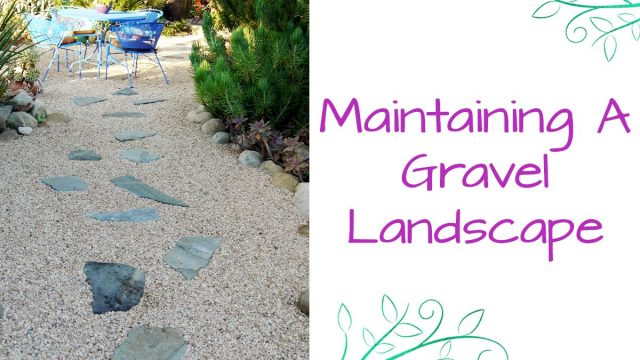 Maintaining A Gravel Landscape