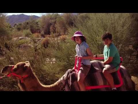 The Living Zoo and Garden and Camel riding| Day Two at Palm Desert 🌴