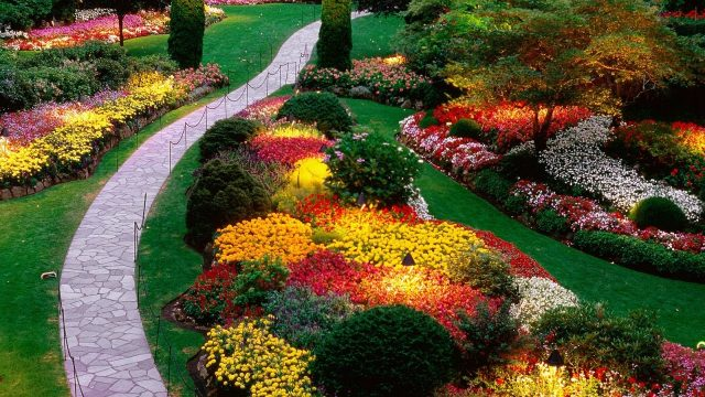 Ideas For Landscaping – Landscaping Design Ideas
