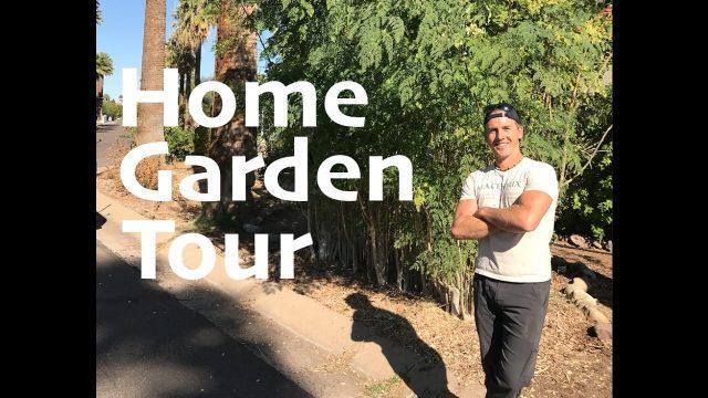 Amazing Home Garden Tour in Phoenix, Arizona