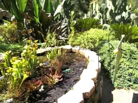 Walkthrough of Kids' Adventure Garden at the Conejo Valley Botanic Garden