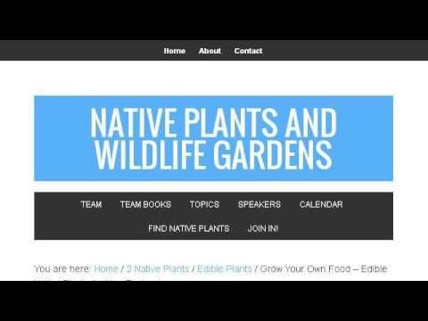 Edible Native Arizona Plants