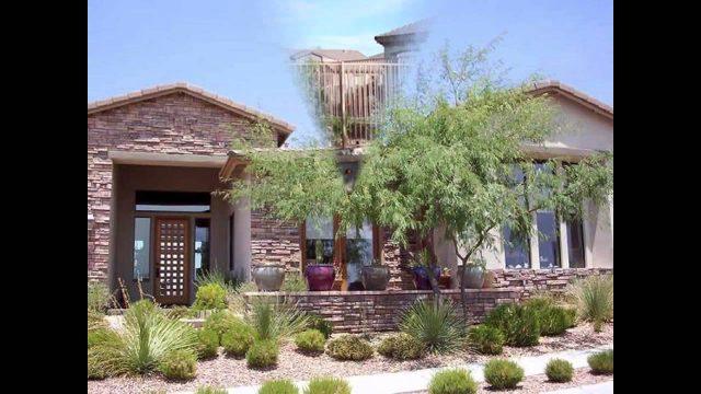 Stunning Desert landscaping ideas