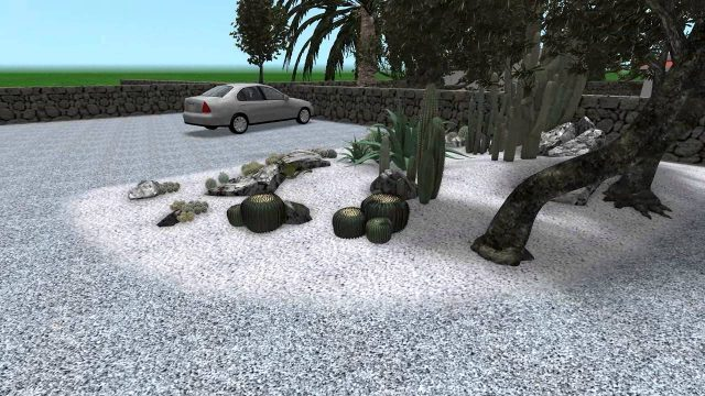 Landscaping project: cactus