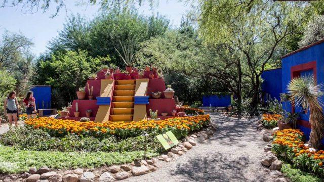 Frida Kahlo's Tucson Botanical Garden