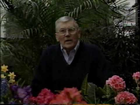 LGTV~1990~The Victory Garden~02×02~Desert Gardening~Moving a Tree