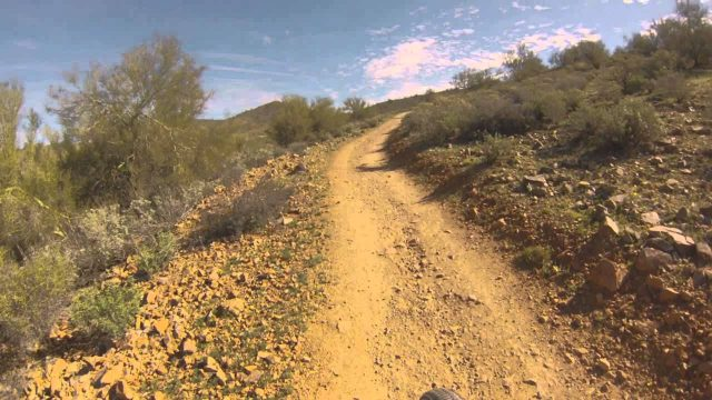 Arizona Sonoran desert ocotillo trail mountain bike descent