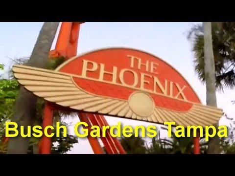 The Phoenix On Ride HD POV Busch Gardens Tampa