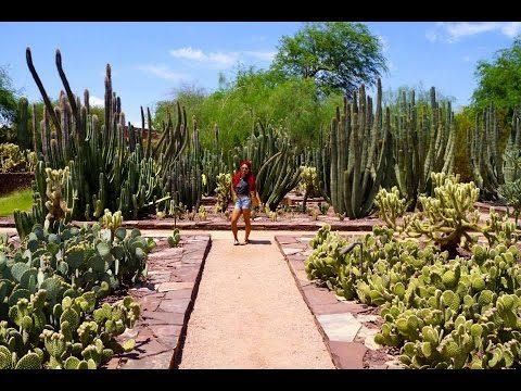 AZ Trip   Birthday trip to Phoenix!