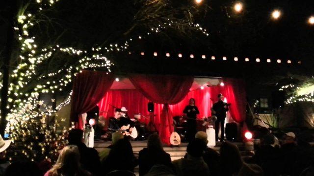 20141220-2115 Irish Washerwoman-Traveler-Desert Botanical Gardens-Lumi Fest-