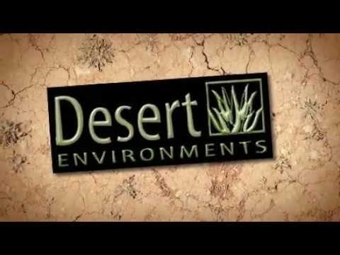 Desert Environments Landscape and Design (480) 339-0949