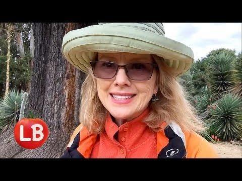 Palo Alto | Stanford Cactus Garden | Kaye's Vlog