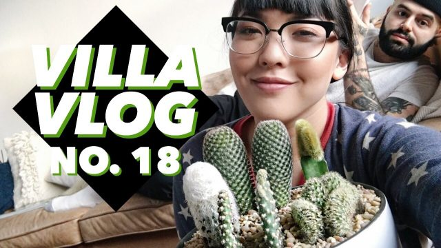 Planting Cacti and a Fiddle Leaf Fig Tree | Villa Vlog No. 18 | soothingsista