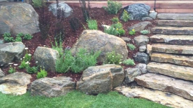 Landscape Design for Mountain Properties in Colorado – Colorado Nature Design