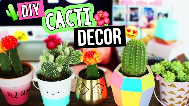 DIY CACTUS/SUCCULENT DECOR