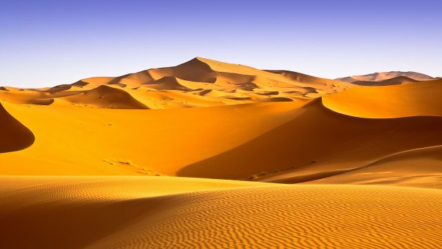 Arabian Music – The Sahara Desert