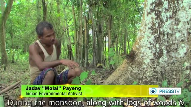 Indian man plants 550 hectares of forest by himself over 30 years