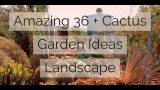 Amazing 36 + Cactus Garden Ideas Landscape