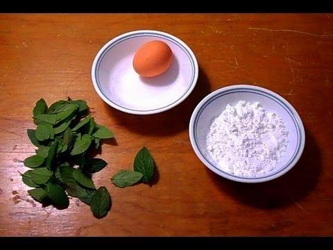 Wild Edibles- Mint Leaf Dessert- Simple & Delicious!