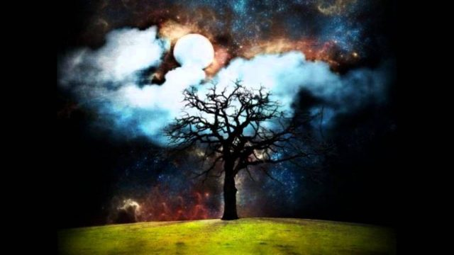 Mother Nature – Phoenix