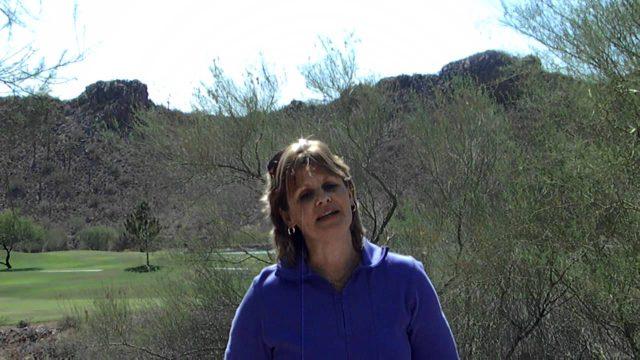 Arizona Desert Living