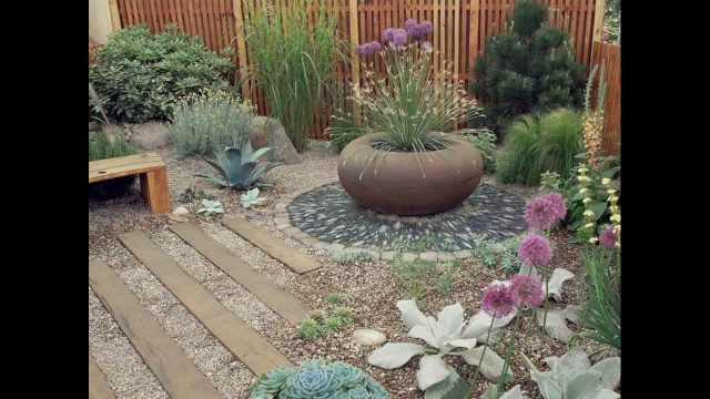 Desert garden landscape ideas