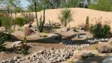 Main Things You Keep In Mind For Desert Landscaping – Different Types