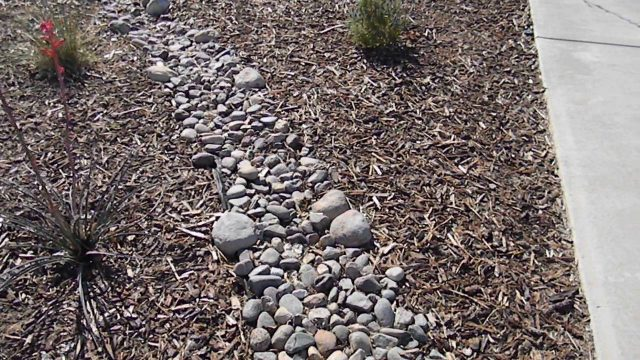 Good Xeriscape Concept With Mulch and Rock