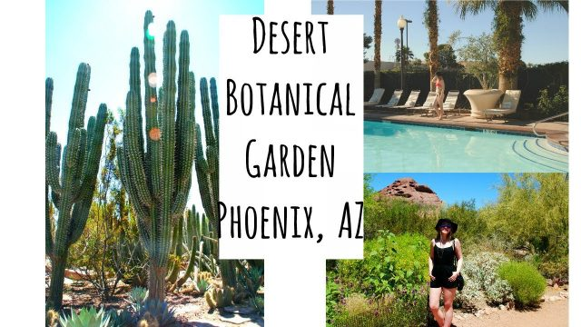 Travel Vlog of the Hoover Dam & Desert Botanical Garden Phoenix, AZ