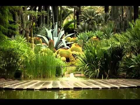 Botanic Garden I Botanic Garden Review