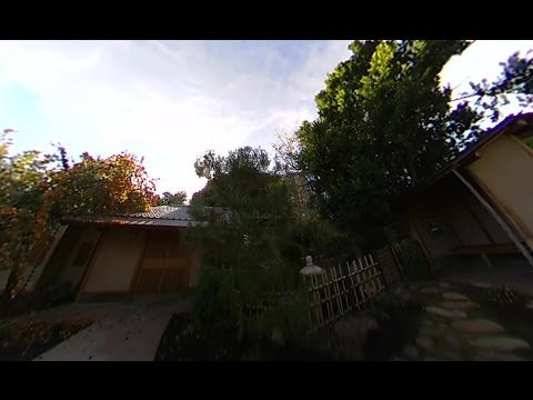 360º VIDEO: Relax in the Phoenix Japanese Friendship Garden