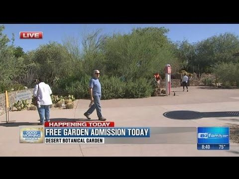 Today is Garden Free Day at Desert Botanical Garden (part 1)