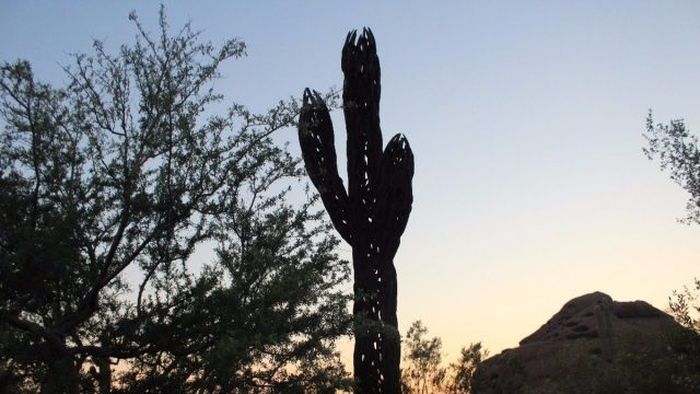 Desert Botanical Garden – Phoenix AZ | GoPro 4k Footage