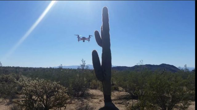 * Yucca, Arizona * Desert Multirotor Flight * Saguaro Cactus * Popsicle X350