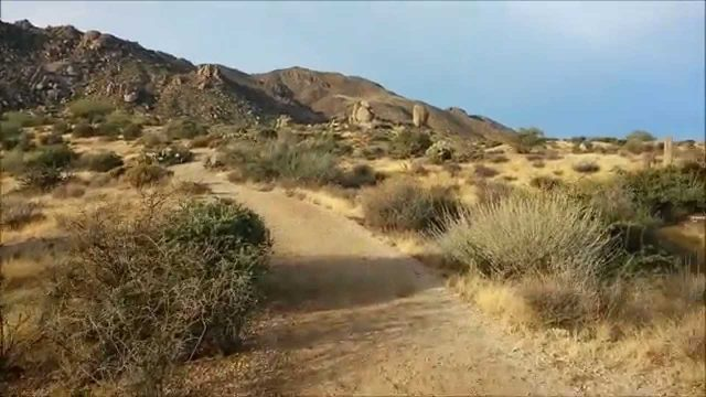 Tom's Thumb Hiking Trail – McDowell Sonoran Conservancy, Phoenix, Arizona