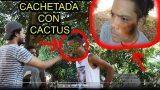 CACHETADAS CON CACTUS  Los Hermanos HD Vlog