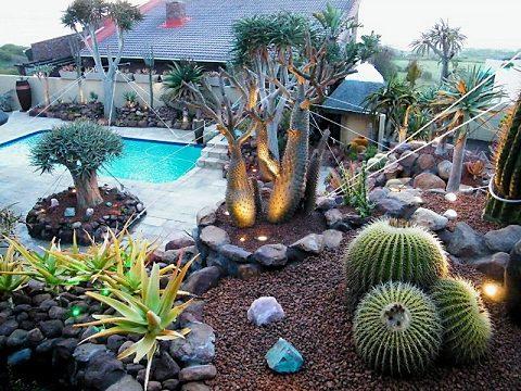Cactus Garden Design i  Succulent Cactus Garden Design