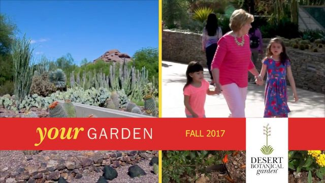 Desert Botanical Garden's Fall 2017 Season