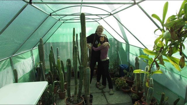Putting up the Cactus & Succulent Polytunnel