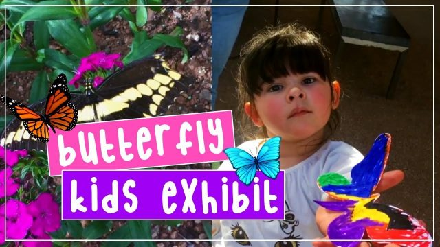 Butterfly Kids Exhibit