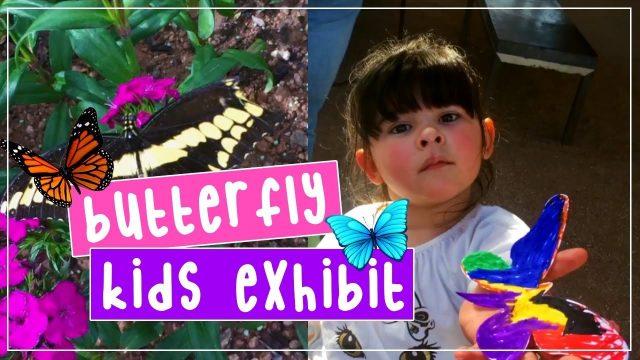 Butterfly Kids Exhibit