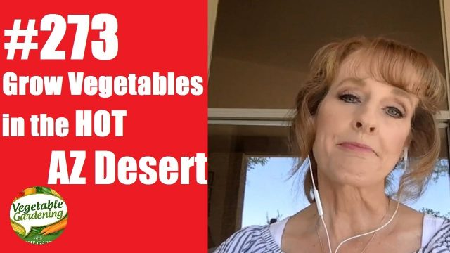#273: How to Grow a Great Vegetable Garden in the Desert Southwest – Tips from the AZ Plant Lady