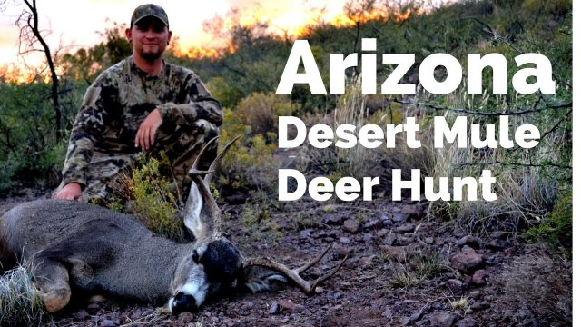 Arizona Desert Mule Deer Rifle Hunt 2016