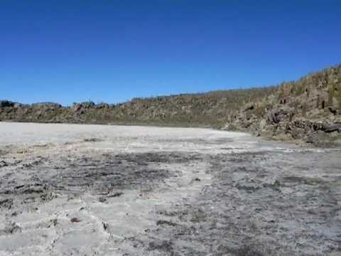 BOLIVIA Unbelievable Landscape: salar de unuyi – salt flats and cactus 20100607