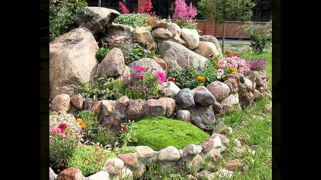 Beautiful cactus rock garden
